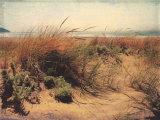 Sand Dunes I