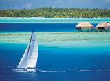 Sailing in Bora-Bora
