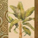 Parlor Palm I