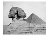 The Great Pyramid and the Sphinx
