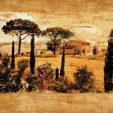 Tuscan Countryside I