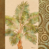 Parlor Palm II