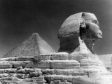 Sphinz and Cheops Pyramid at Giza  Egypt