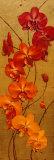 Golden Orchids I