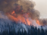 The Red Eagle wildfire of 2006