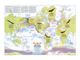 1976 Great Whales  Migration and Range Map