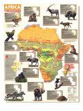 1990 Africa Threatened Map