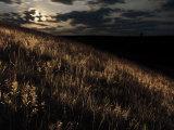 Moonrise over the prairi