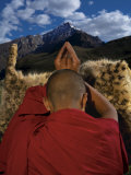 A monk prays for an end to snow leopard killings