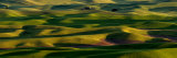 The Palouse Hills of southeastern Washington State