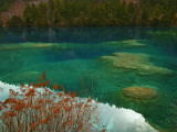 Heavy Carbon Content Colors the Water of Sleeping Dragon Lake