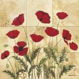 Patterned Poppies