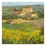 Village provençalIII Giclée premium par Michael Longo