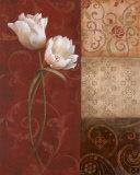 Tulip Grace