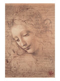 Female Head (La Scapigliata) c. 1508 sketch drawing artwork by Leonardo da Vinci