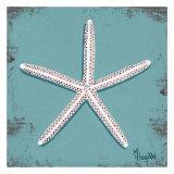 Distressed Seashells: Starfish II