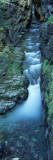 Water Flowing Through Rocks  Sunrift Gorge  Us Glacier National Park  Montana  USA