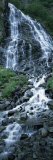 Waterfall in a Forest  Horsetail Falls  Valdez  Alaska  USA