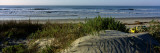 Panoramic View of a Beach  Kiawah Island Golf Resort  Kiawah Island  Charleston County