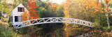 Arched White Footbridge  ME