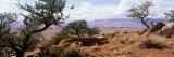Vermilion Cliffs Antelope Pass Az  USA