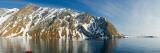 Reflection of Bird Cliffs in Water  Bellsund  Spitsbergen  Svalbard Islands  Norway