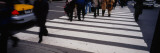Group of People Crossing at a Zebra Crossing  New York City  New York State  USA