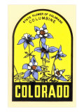 Columbine Decal