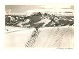 Herringbone Ski Track  Telluride  Colorado