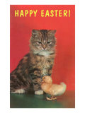 Happy Easter  Kitten and Chick