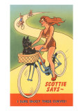 Enjoy Curves  Scottie in Bicycle Basket