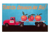 Florida Oranges Are Big  Three Oranges on Toy Flatbed