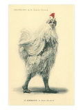 Chanticleer  Man in Chicken Suit