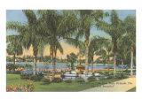 Eola Park  Orlando  Florida