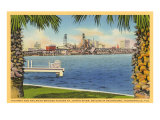 Bridge and City View  Jacksonville  Florida