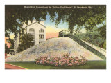Indian Shell Mound  St Petersburg  Florida