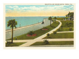 Bay Shore Drive  Tampa  Florida