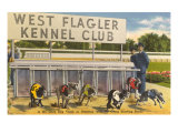 Greyhound Track  Flagler  Florida