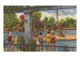 Venetian Pools  Coral Gables  Florida