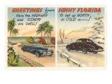 Motoring in Florida Versus the North