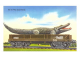 Giant Alligator on Flatbed  Florida