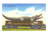 Giant Alligator on Flatbed  Florida