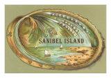 Souvenir from Sanibel Island