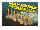 Water Skiers  Cypress Gardens  Florida