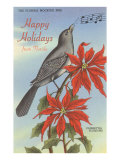 Happy Holidays from Florida  Mocking Bird  Poinsettias