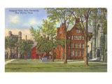 Yale University  New Haven  Connecticut