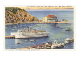 Steamers at Pier  Casino  Catalina  California