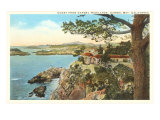 Coast from Highlands  Carmel  California