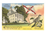State Capitol  Mocking Bird  Flag  Florida