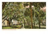 Magnolia Street  Daytona  Florida